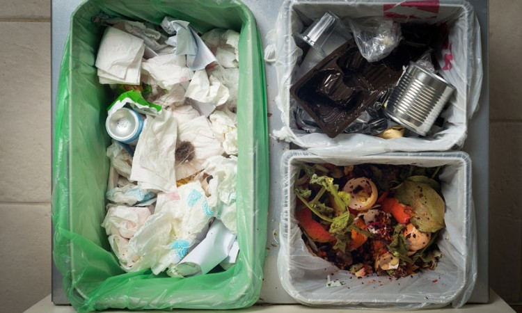 49152747 - household waste sorting and recycling kitchen bins in the drawer. responsible behavior, ecology concept.