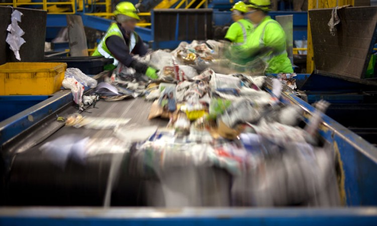 25569946 - workers separating paper and plastic on a conveyor belt in a recycling facility