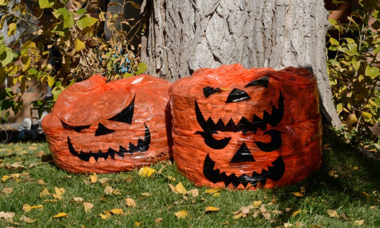 66721645 - jack o lantern halloween decoration leaf bags full of leaves in yard